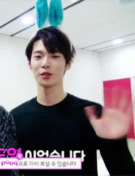 Watch smrookies af GIF on Gfycat. Discover more doyoung, gifs, smrookies, sr15b GIFs on Gfycat