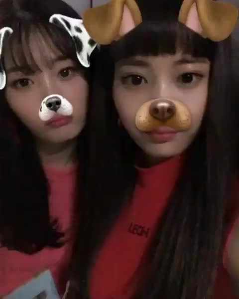 Watch and share Chaeyeon GIFs and Jooeun GIFs by Shawn on Gfycat