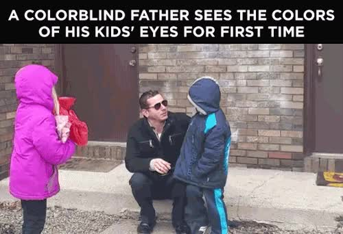 Watch Colorblind father GIF on Gfycat. Discover more related GIFs on Gfycat