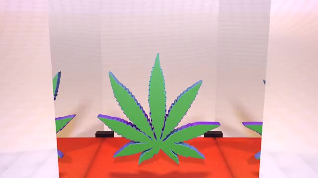Watch and share Weed GIFs on Gfycat