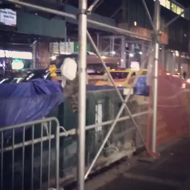Watch Delivery Raccoon GIF by udwalker on Gfycat. Discover more animal, animals, delivery, new york, nyc, pizza rat, raccoon, times square GIFs on Gfycat