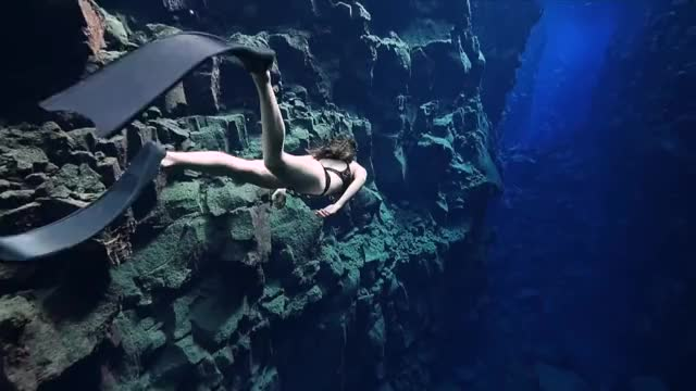 Watch and share Freediving GIFs and Underwater GIFs on Gfycat