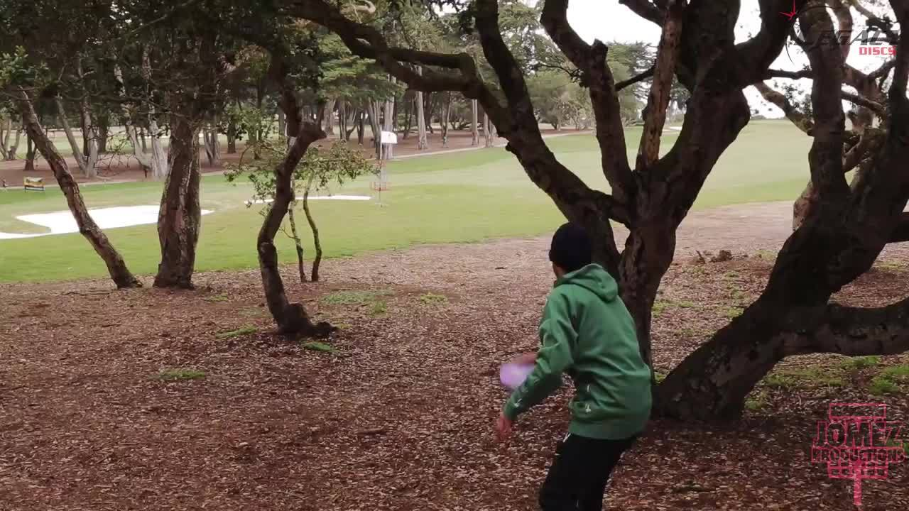 discgolf, Just one of those days... (reddit) GIFs