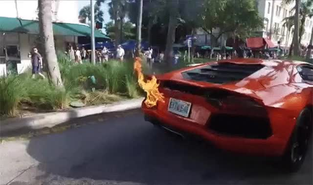 Watch and share Valet's Job Flames Out While Lamborghini Aventador Flames Up - TeamSpeed GIFs on Gfycat