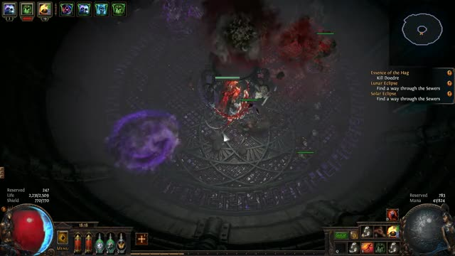 Watch and share Path Of Exile GIFs and Poe GIFs by Doofus on Gfycat