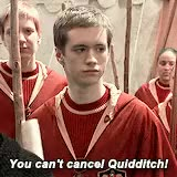 Watch and share Sean Biggerstaff GIFs and Harry Potter GIFs on Gfycat