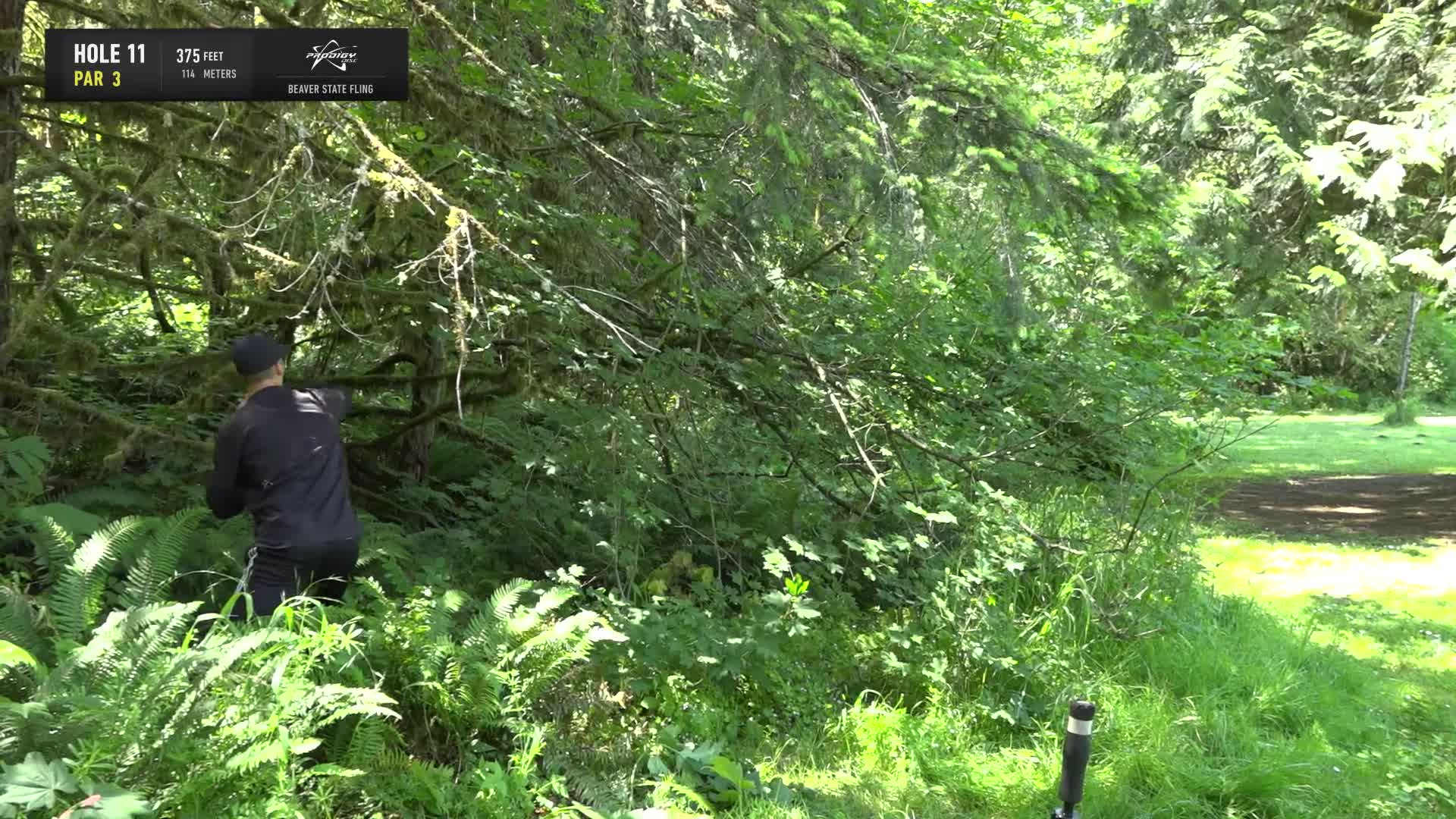 ace, bsf, dela, delaveaga, dgpt, dgwt, disc, disc golf, frolf, hole in one, masters cup, mcbeast, milo, nate sexton, nt, paul mcbeth, pdga, simon lizotte, tournament, worlds, 2019 Beaver State Fling - Round 3 Part 2 - Seppo Paju hole 11 approach GIFs