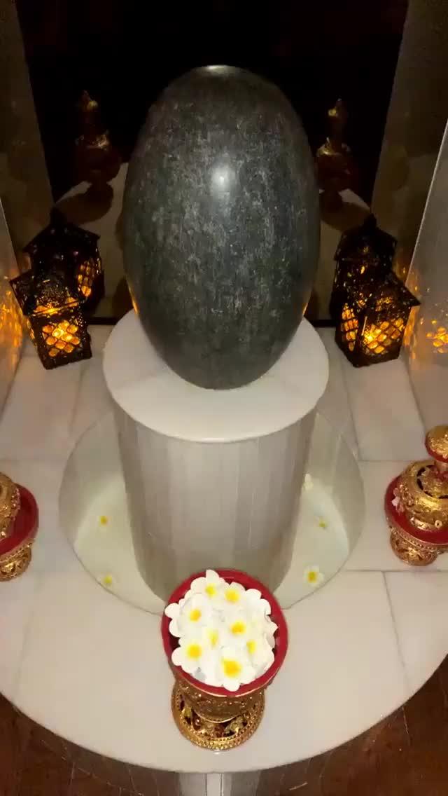 Watch and share Jamielynrinaldi 2018-12-08 08:07:02.223 GIFs by Pams Fruit Jam on Gfycat