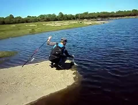 Watch and share Fishing GIFs on Gfycat