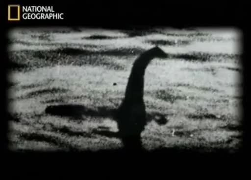 Watch and share Reportage  :  Vérité Sur Le Monstre Du Loch Ness GIFs on Gfycat