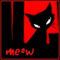 cat, kitten, kitty, meow, Meow GIFs