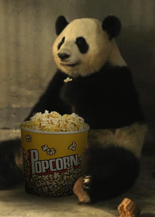 popcorn, Drama GIFs