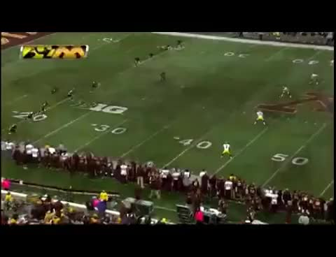 Watch and share Gophers GIFs on Gfycat