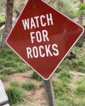 Watch and share ⁣Watch Out For Rocks. GIFs on Gfycat