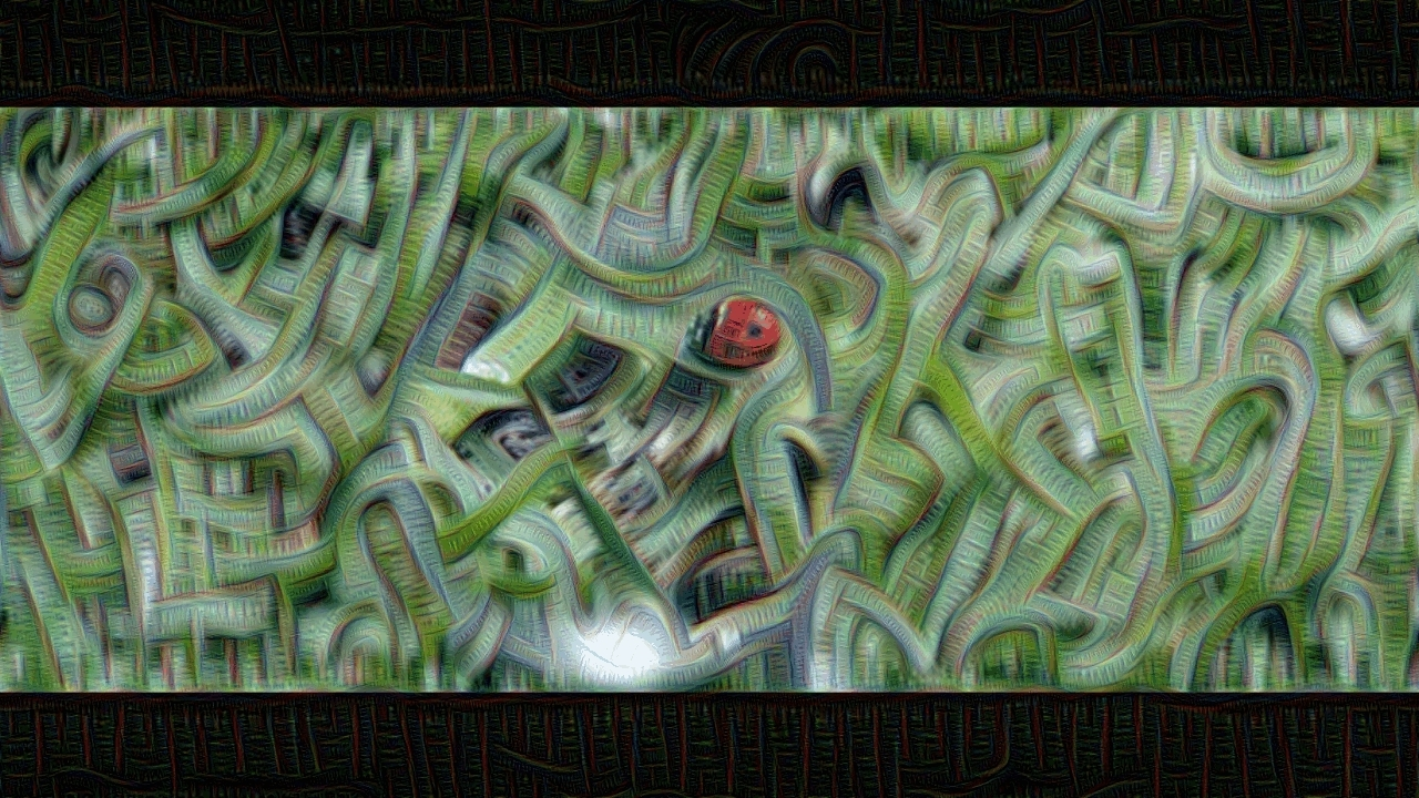 deepdream, inception3b5x5, deepdream inception_3b_5x5 GIFs