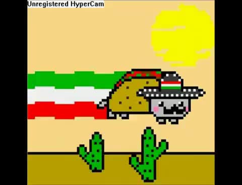 Watch and share Mexican GIFs and Nyan GIFs on Gfycat