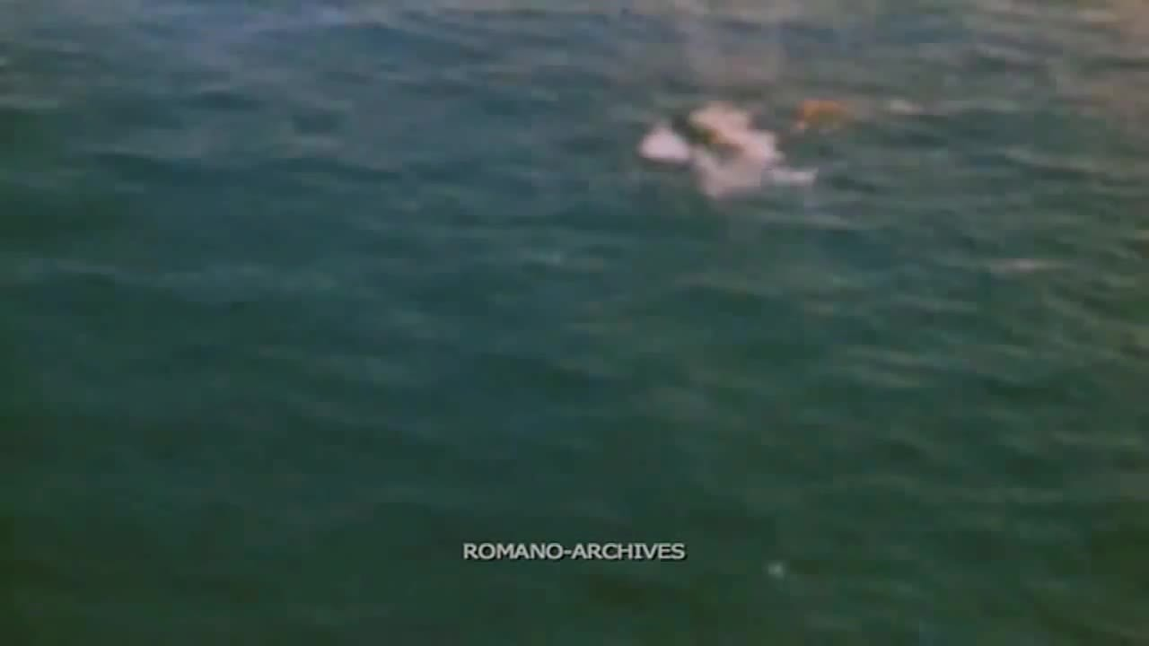 CombatFootage, warshipsnuffporn, Japanese ship destroyed in strafing run (reddit) GIFs
