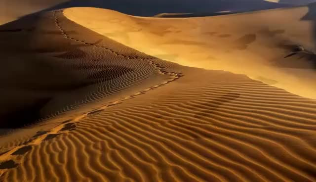 Beautiful Desert - Beyond The Horizon - Original Music GIF | Find