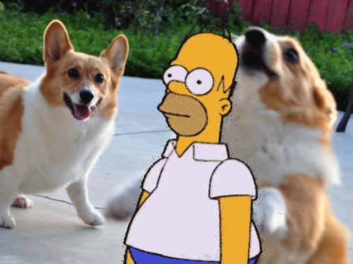 Watch and share Homer Simpson GIFs and The Simpsons GIFs by Streamlabs on Gfycat