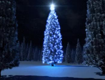Watch and share Christmas Tree Light House GIFs on Gfycat