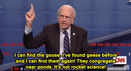 geese, goose, larry david, saturday night live, snl, fix it snl GIFs