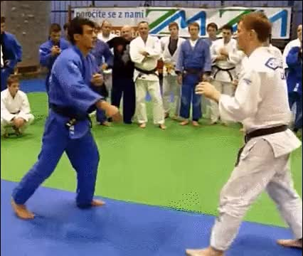 Watch and share Martial Arts GIFs and Mygif GIFs on Gfycat