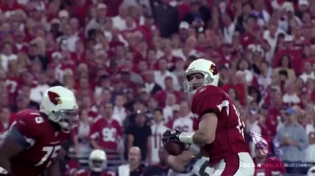 Watch this arizona cardinals GIF by GIF Brewery Developer (@patrick_) on Gfycat. Discover more arizona cardinals, touchdown GIFs on Gfycat