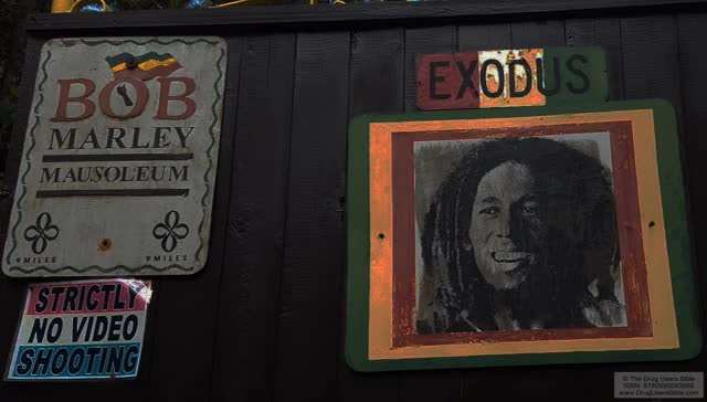 Watch and share Bob Marley GIFs and Marijuana GIFs by LenoreX on Gfycat