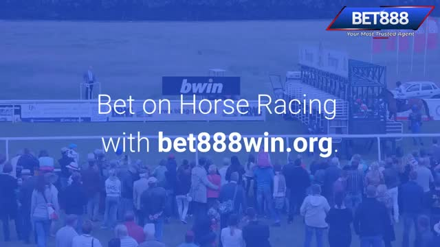 Watch and share Horse Betting | Call - 65 8136 9998 | Bet888win.org GIFs by Baccarat Singapore on Gfycat