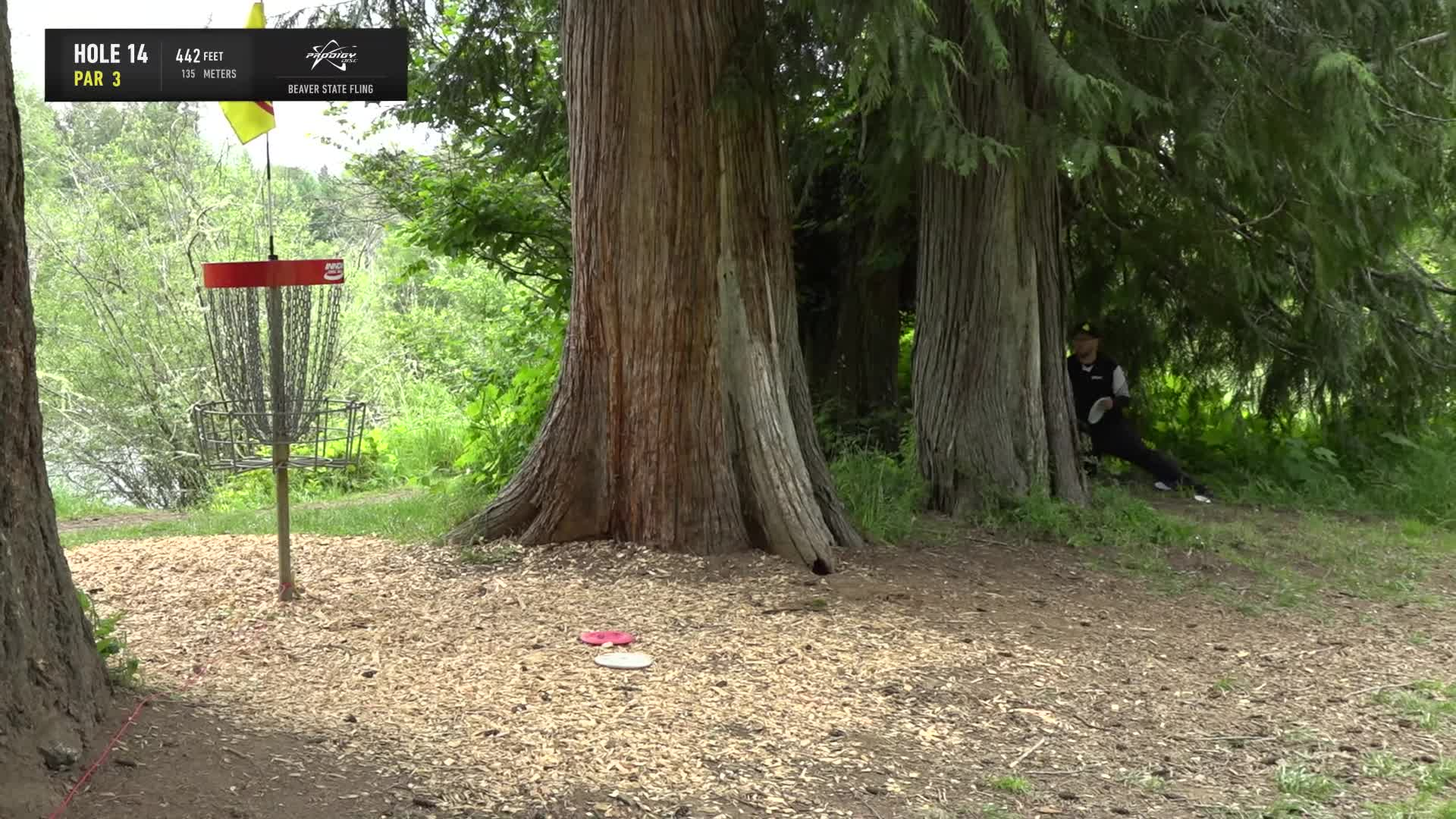 ace, bsf, dela, delaveaga, dgpt, dgwt, disc, disc golf, frolf, hole in one, masters cup, mcbeast, milo, nate sexton, nt, paul mcbeth, pdga, simon lizotte, tournament, worlds, 2019 Beaver State Fling - Round 1 Part 2 - Kyle Crabtree hole 14 putt GIFs