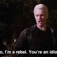 Watch and share I'm A Rebel. You're An Idiot GIFs on Gfycat