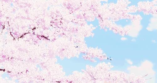 Aesthetic Anime Cherry Blossom Wallpaper Top Anime Wallpaper
