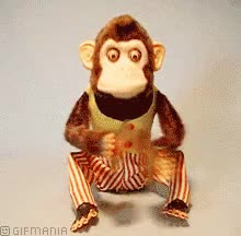 Watch Monkey with cymbals GIF on Gfycat. Discover more related GIFs on Gfycat