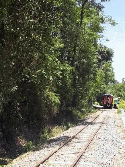Watch and share Um Passeio No Trem Da EFSC -  Estrada De Ferro Santa Catarina GIFs on Gfycat