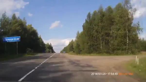 Watch and share Yesyesyesno GIFs by forte3 on Gfycat