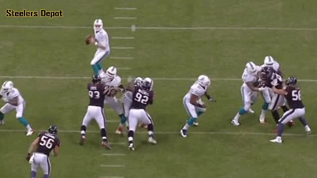 Watch and share Miami Dolphins GIFs and Football GIFs by steelersdepotgifs on Gfycat