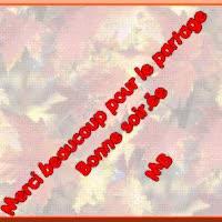 Watch and share Merci Beaucoup Pour Le Partage Bonne Soirée GIFs on Gfycat