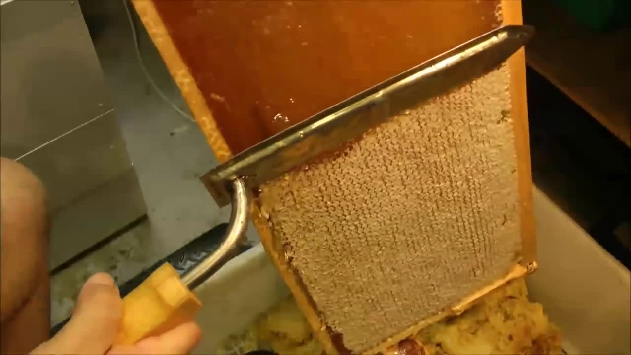 beeswax processing, mahakobees, oddlysatisfying, How to UNCAP a full honey frame fast with a hot knife - Beekeeping 101 GIFs