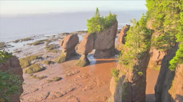 Watch and share Creative Imagery GIFs and Hopewell Rocks GIFs by reachersaidnothing on Gfycat