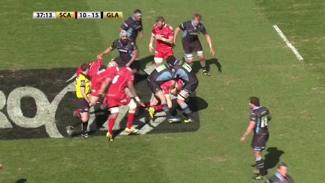 Watch and share Rugbyunion GIFs by kpatb on Gfycat