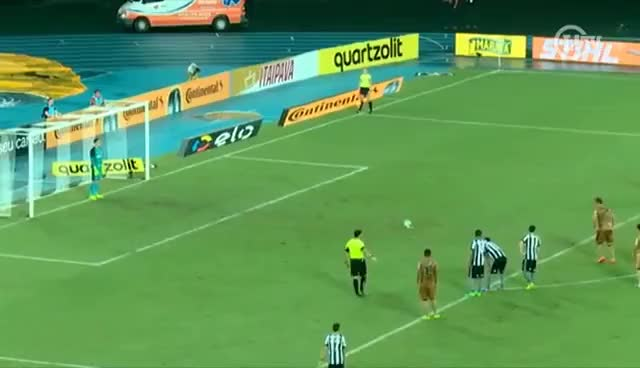 Watch and share Gatito Salva, Guilherme Marca Dois, E Botafogo Vira Sobre O Sport GIFs on Gfycat