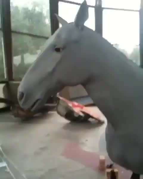 Watch Animatronic horse puppet is incredibly life-like GIF by tothetenthpower (@tothetenthpower) on Gfycat. Discover more related GIFs on Gfycat