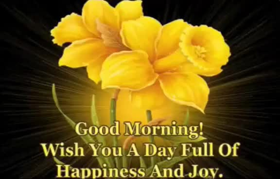 Watch and share Latest Good Morning Beautiful SMS, Wishes,  Greetings, WhatsApp Video Full HD GIFs on Gfycat