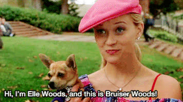 reese witherspoon, Bruiser Woods GIFs