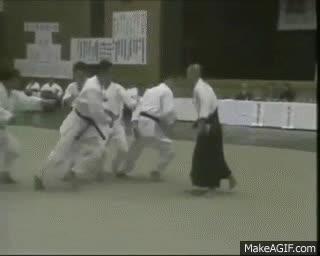 Aikido: Reality vs fantasy GIFs