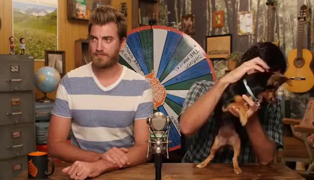 Watch Puppy Jade GIF on Gfycat. Discover more gmm GIFs on Gfycat