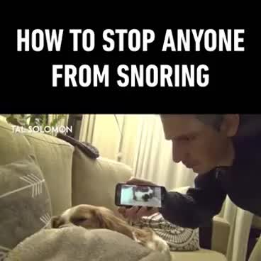 "Watch 9gag ""How to stop anyone from snoring"" GIF on Gfycat. Discover more related GIFs on Gfycat"
