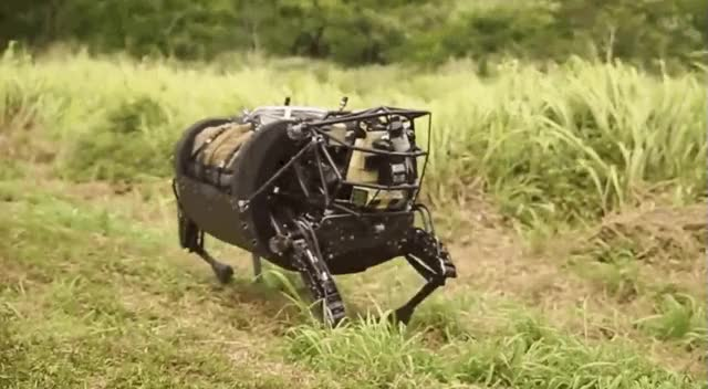 Watch and share Boston Dynamics GIFs on Gfycat