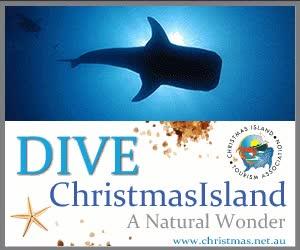 Watch and share 🇨🇽 — Christmas Island GIFs on Gfycat