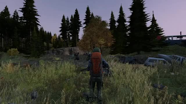 Watch When you get 3 cars stuck on devil's bridge GIF on Gfycat. Discover more dayz GIFs on Gfycat